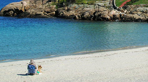 beaches - good harbor2.jpg