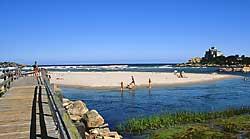 Beaches Good Harbor Jpg